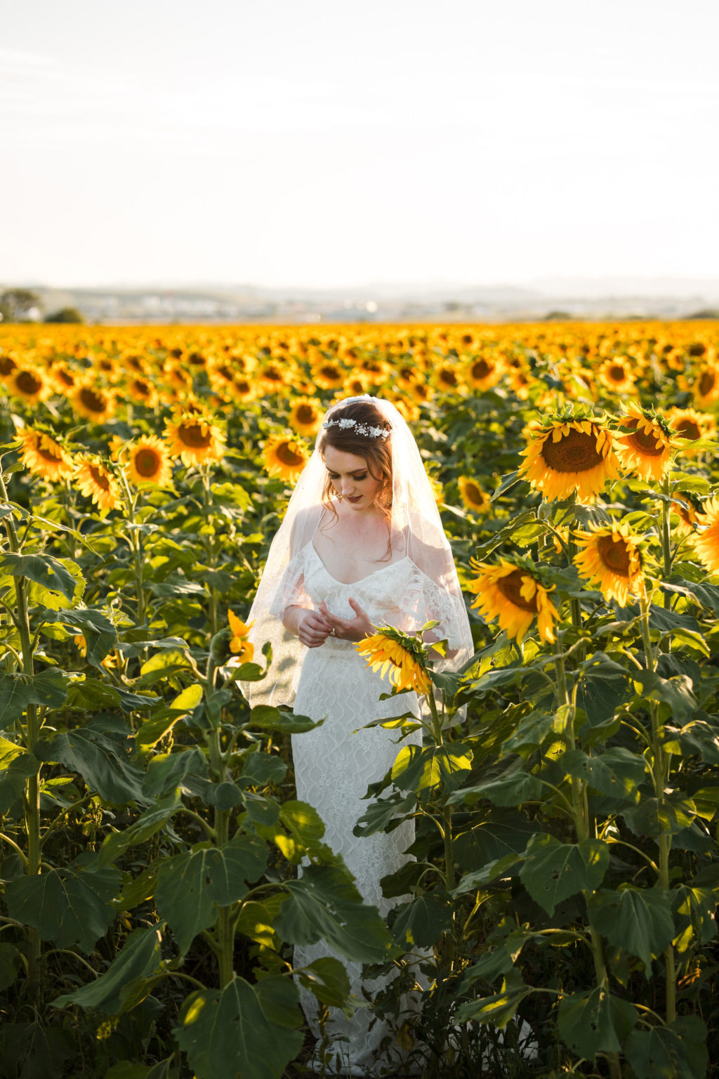 Sunflower Wedding Inspiration at Black Hills South Dakota